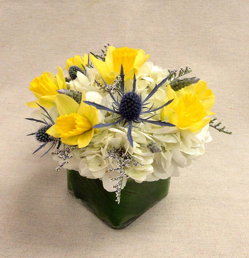 $20 Arrangement - Yellow Daffodil